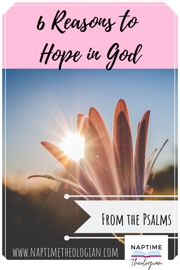 6 Reasons to Hope | God as King in The Psalms