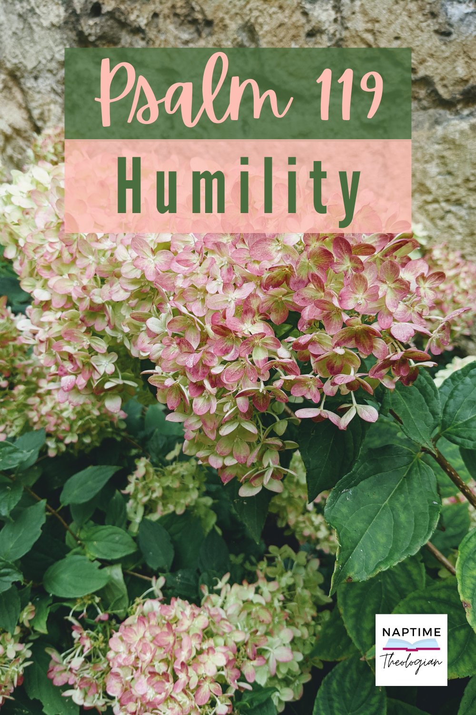 Psalm 119   Humility
